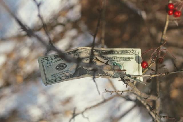 שער הדולר עולה. ושוב יורד. האם זה הזמן לקנות?