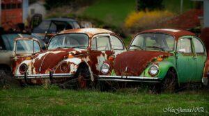 אלה 2 מניות הרכב שכדאי שתכירו